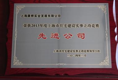 红旗中队荣誉奖牌图片